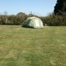 Spacious Pitches @ Haw Wood Farm